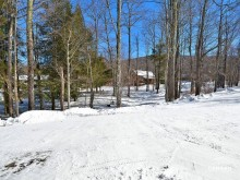 Northwoods B6, The Basebox in Canaan Valley