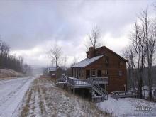 Snow Oaks in Canaan Valley