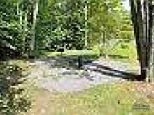 Sloan Bear Hideaway in Canaan Valley